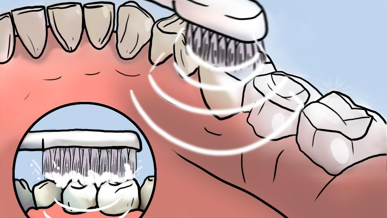 Как пользоваться электрической зубной щеткой?
